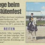 Artikel Zeitung 2008